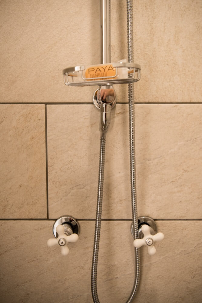 shower fixture with soap holder